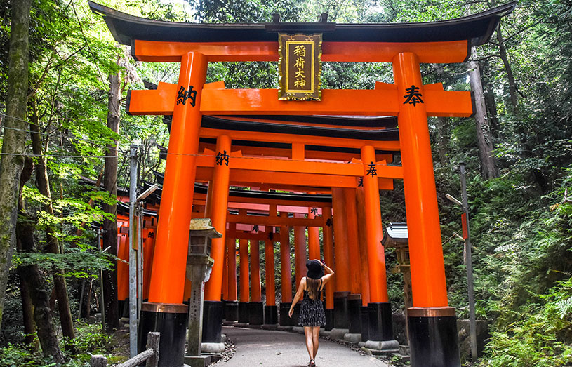 fushimi shrine gates