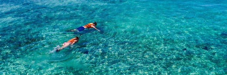Two snorkelers in the ocean