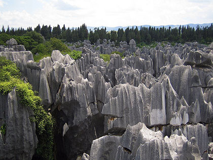 Sharp, jagged rocks punch upwards towards the sky in China's Stone Forest.