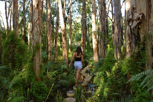 Lisa bushwalk